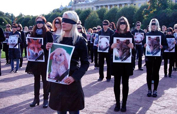 акция в защиту животных фото